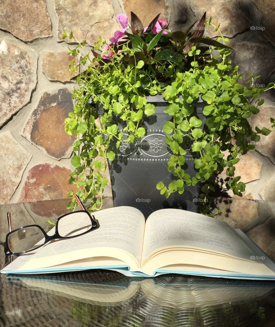 Flower Pot and Book