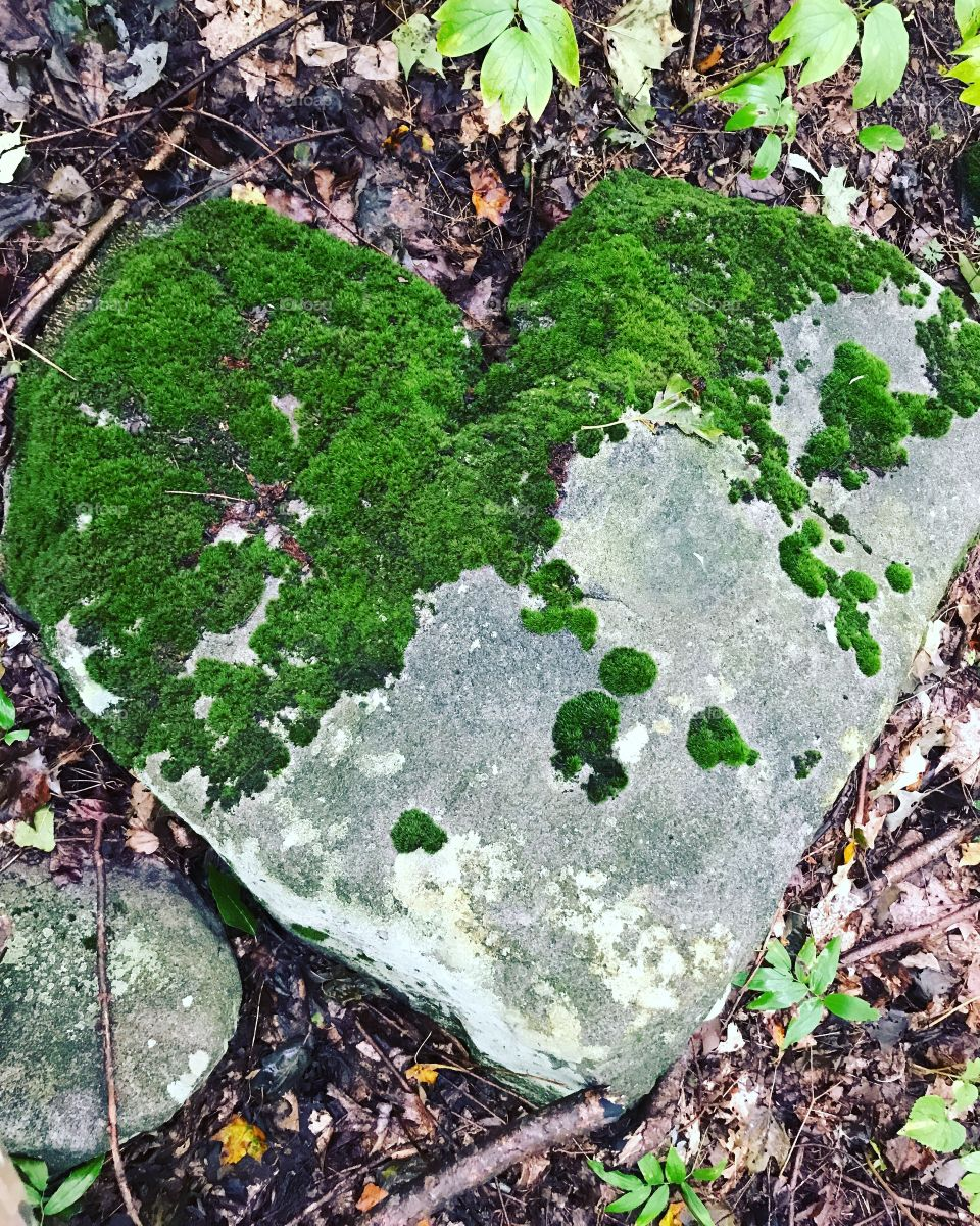 Amazing heart-shaped rock, found while hiking.