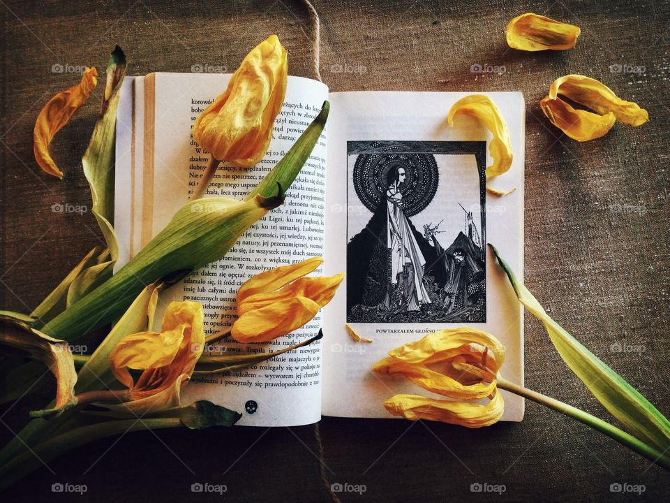 Tulips on the book