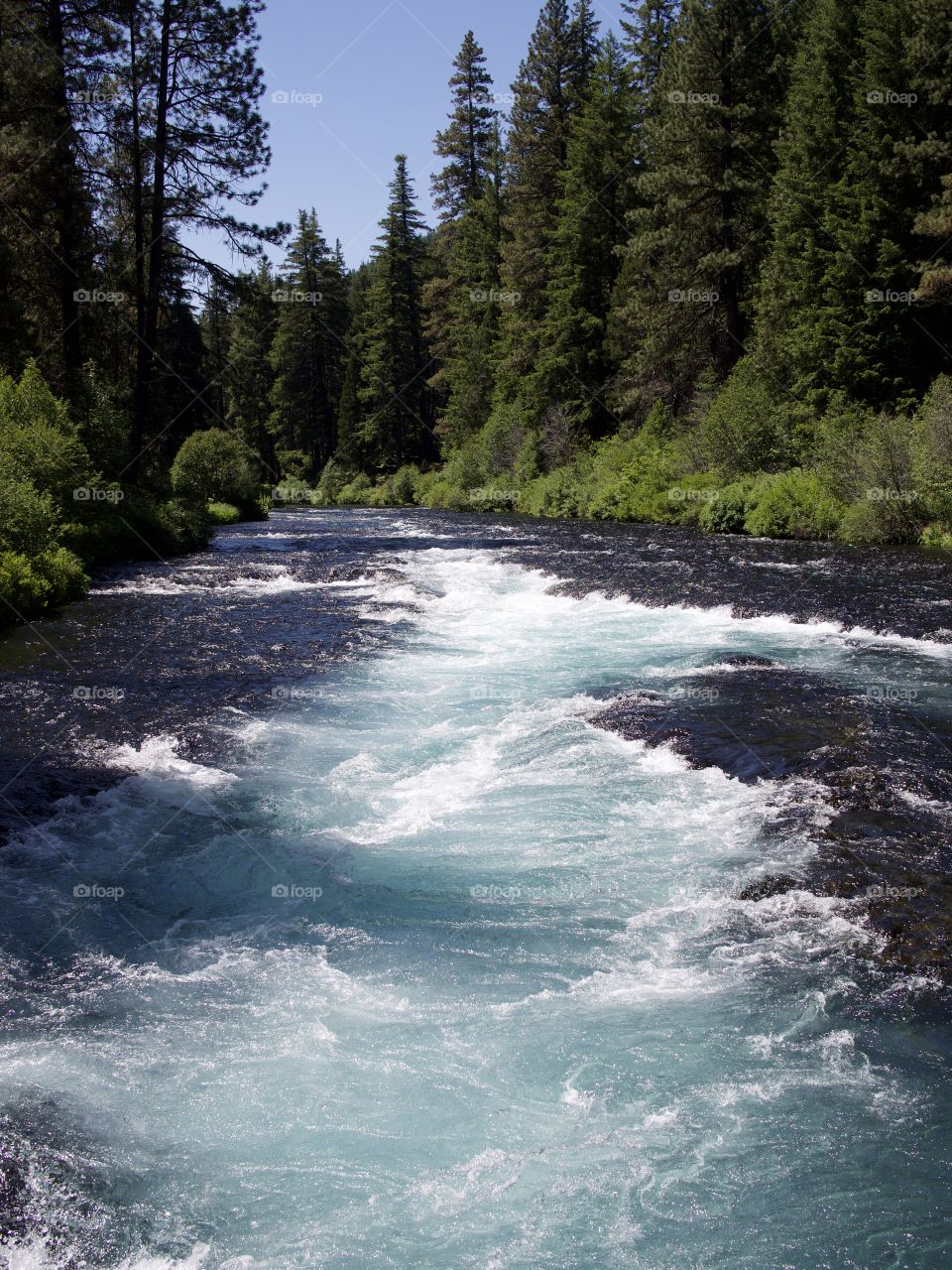 The absolutely stunning turquoise waters of Wizard Falls in the Metolius River on a sunny summer morning in Central Oregon.