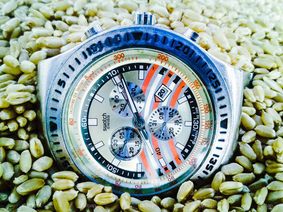 Antique pocket watch in wheat