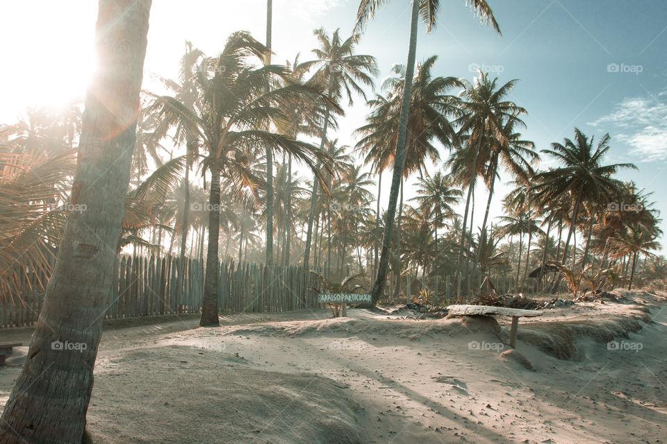 Paraíso Particular Praia