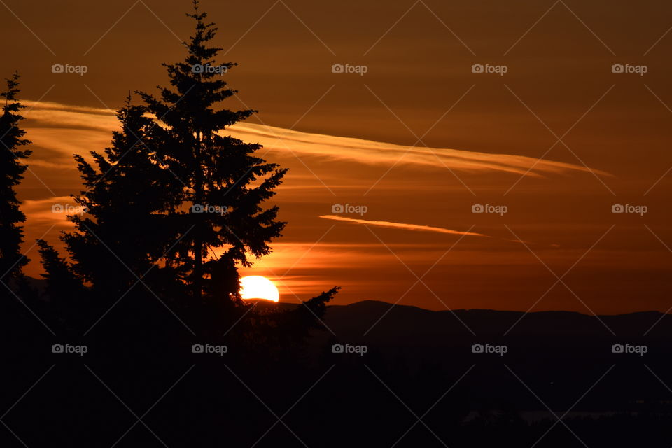 sunset behind  trees &Olympic mountains 6 5 16. sunset behind  trees &Olympic mountains 6 5 16