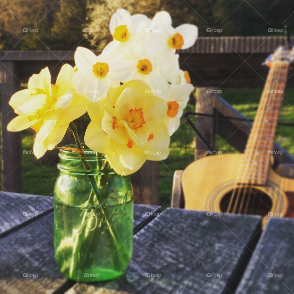 Daffodils and guitar