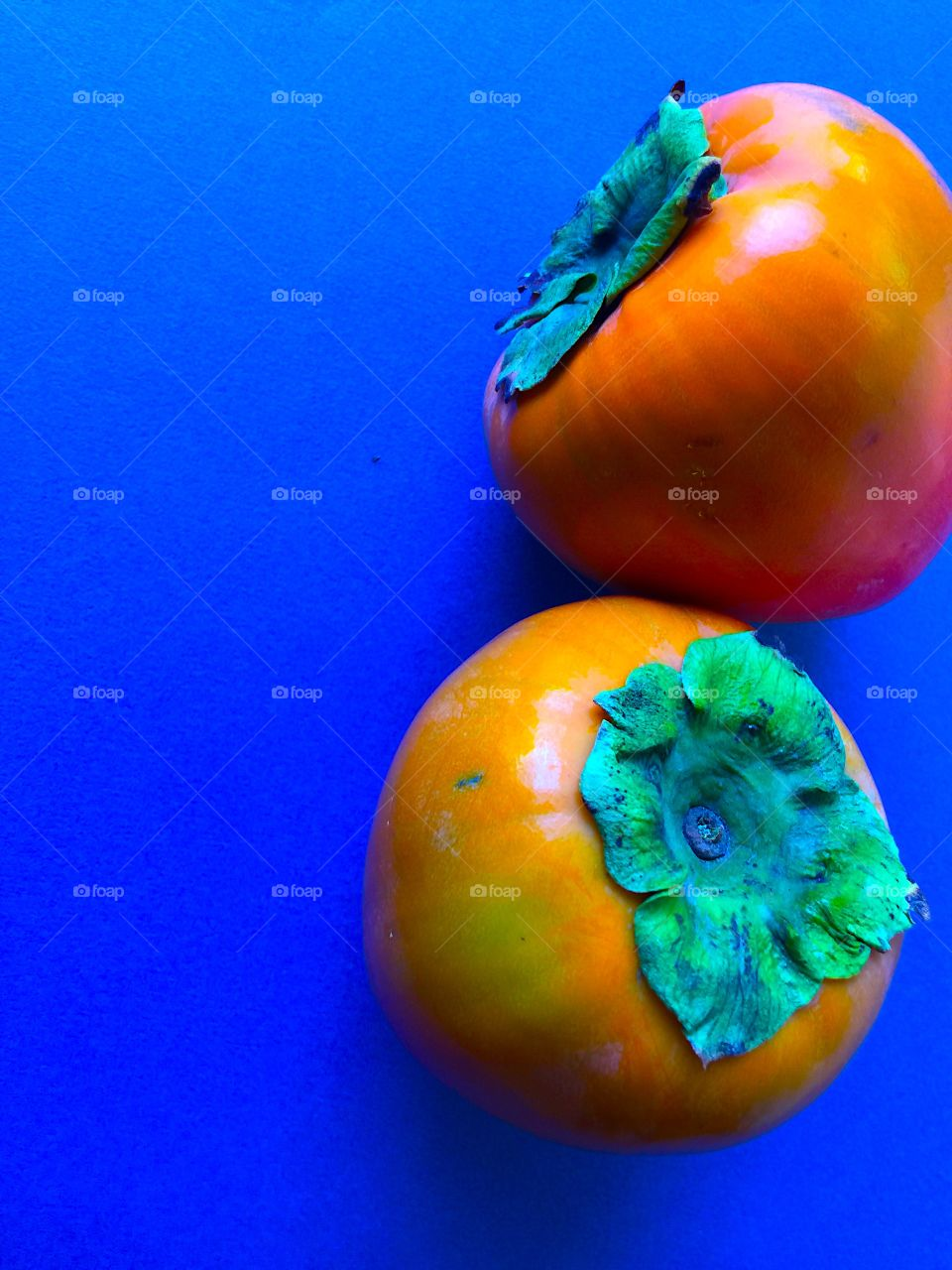 Two persimmons on blue background