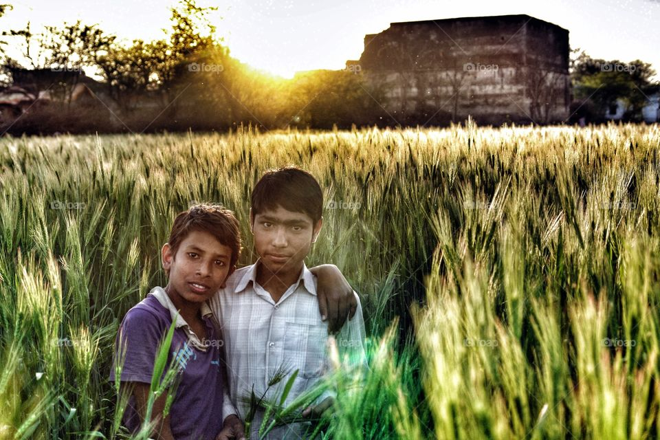 Two boys pose for the camera in a barley field, Rajasthan, India . Two boys pose for the camera in a barley field, Rajasthan, India