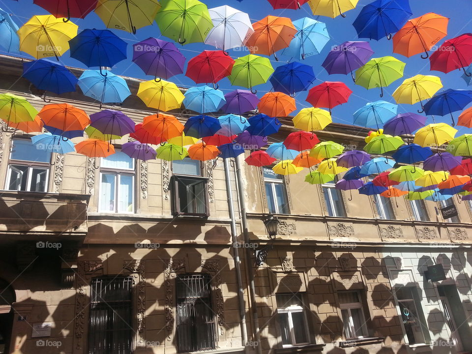 umbrella. Colores