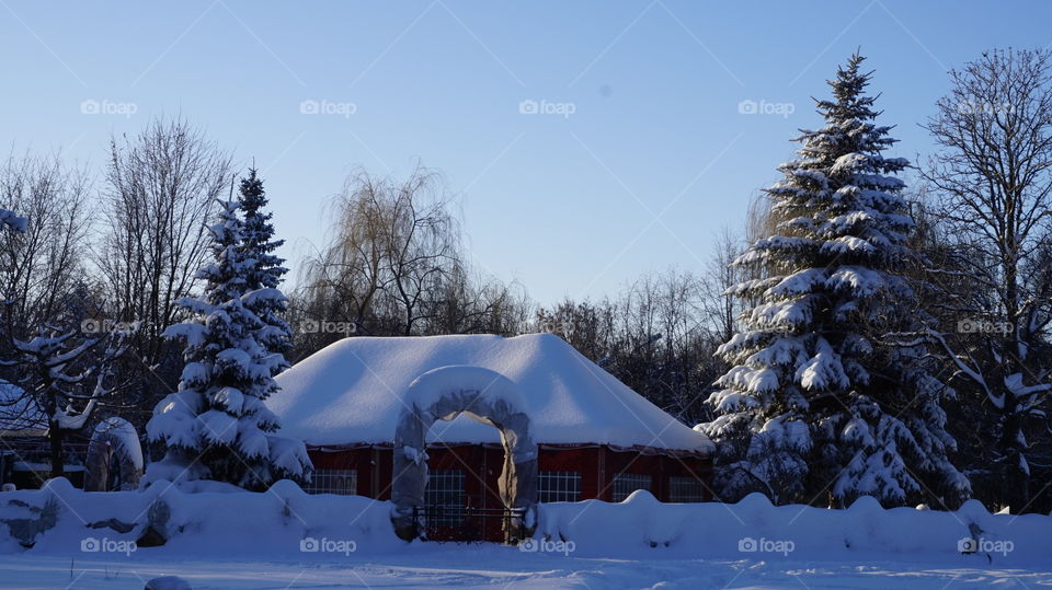 Scenic view of house covered with snow
