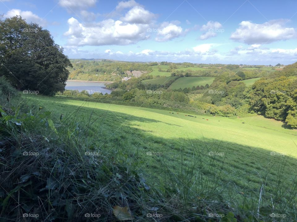 Devon sun-filled countryside that demand the viewers eye, rich in beauty and charm.