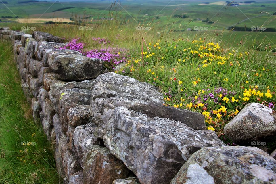 View of hadrians wall
