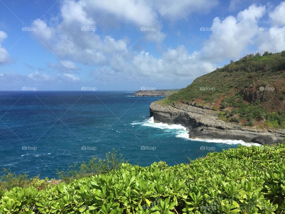 The Oceanic View