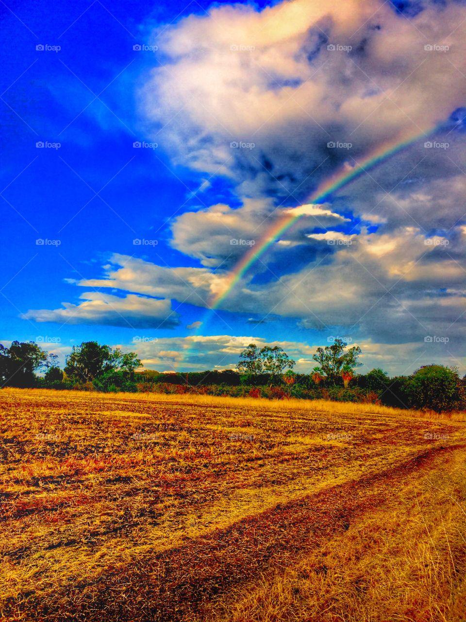 Rainbow over farmland.