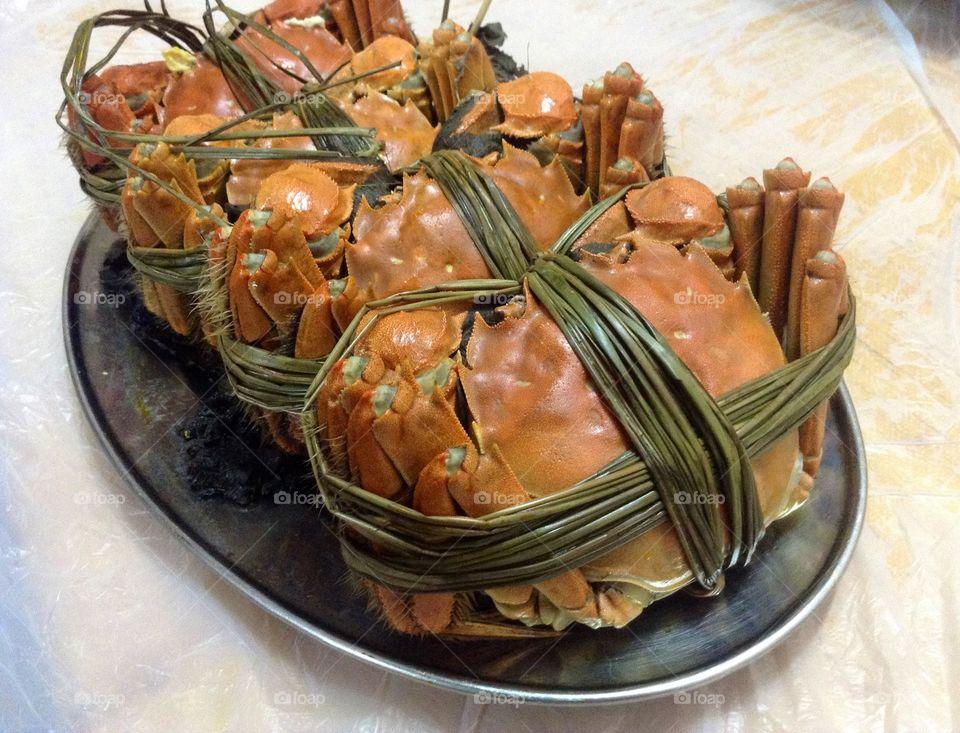 Mud crabs tied up