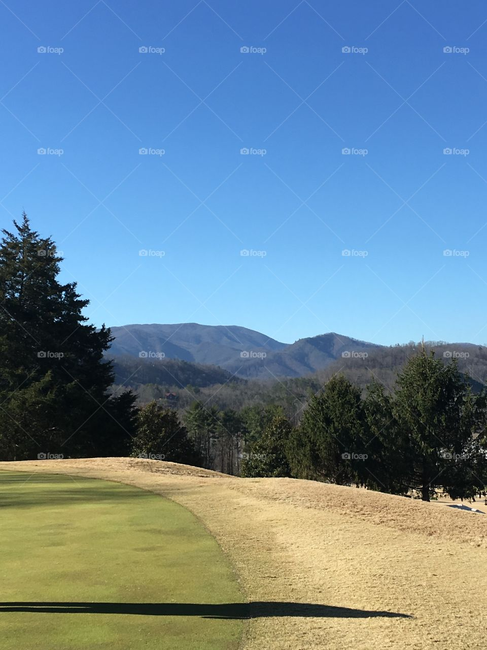 Golfing in the smoky's