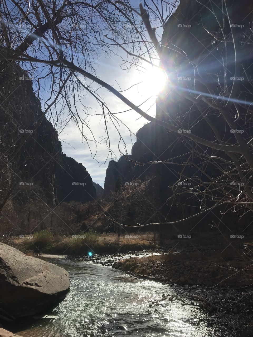 Zion National park river