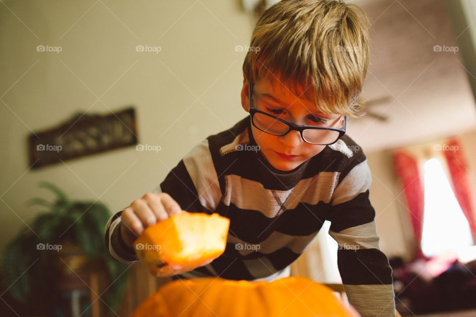Boy looking into pumpkin . Child checking out the inside of a jack-lantern