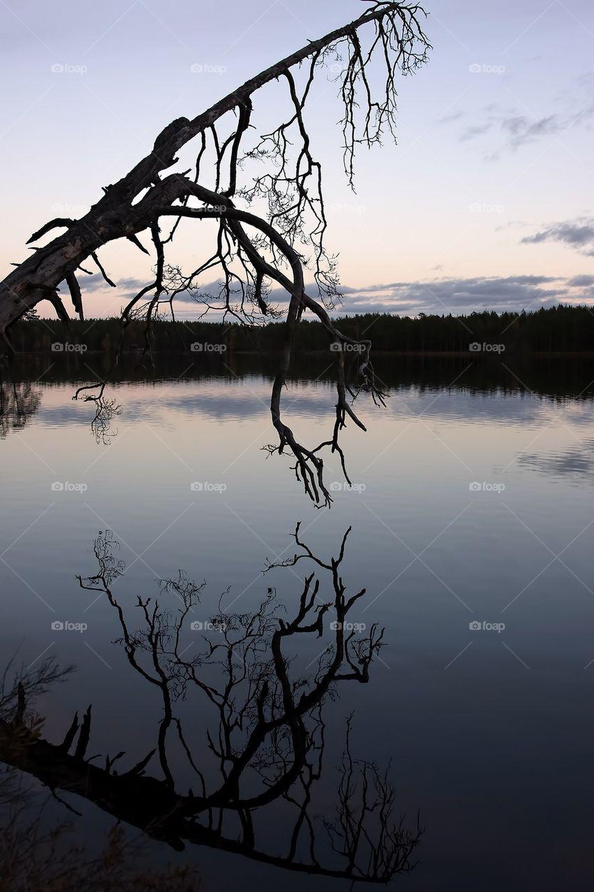 Nävsjön Näverkvarn Sweden