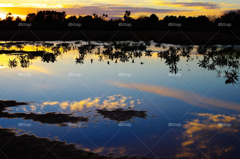 Reflection of an Arizona sunset in a lake (and if you look closely, you can see the reflection of ducks flying overhead in the middle of the lake).