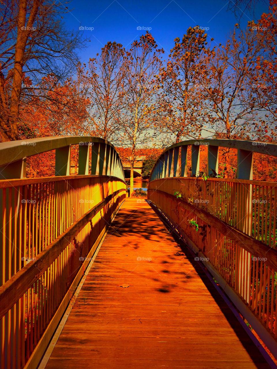 Walking Bridge Through Autumn