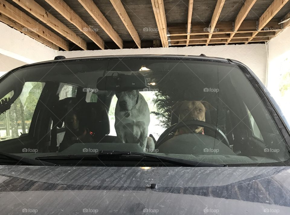 Hey guys where are we driving our Dad?