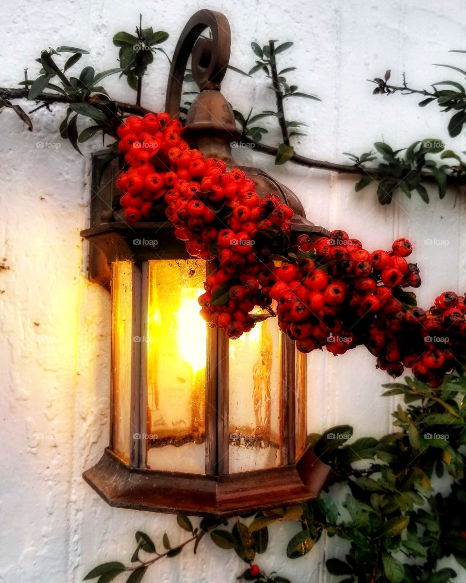 Lantern adorned with holly and berries