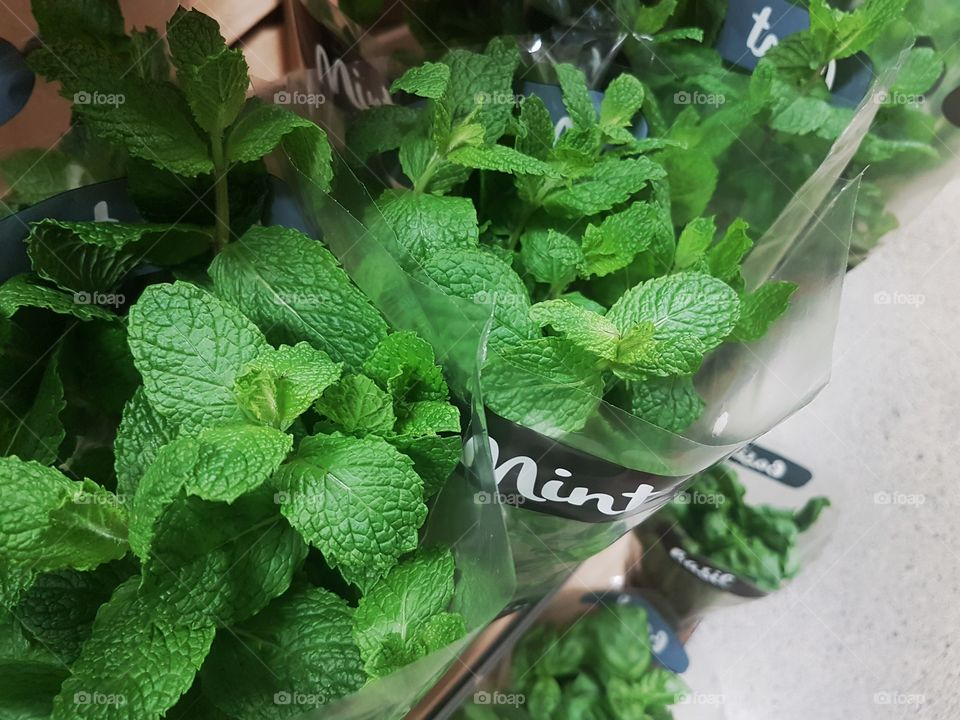 Fresh Mint Herbs at the market