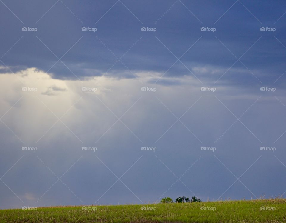Rain on the Plains - rain clouds on the horizon in a rural area, small group of tree tops visible