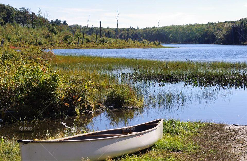 Wicket Pond