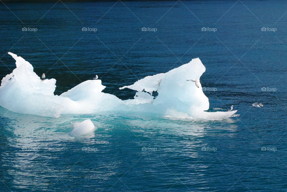 Glacier ice chunk
