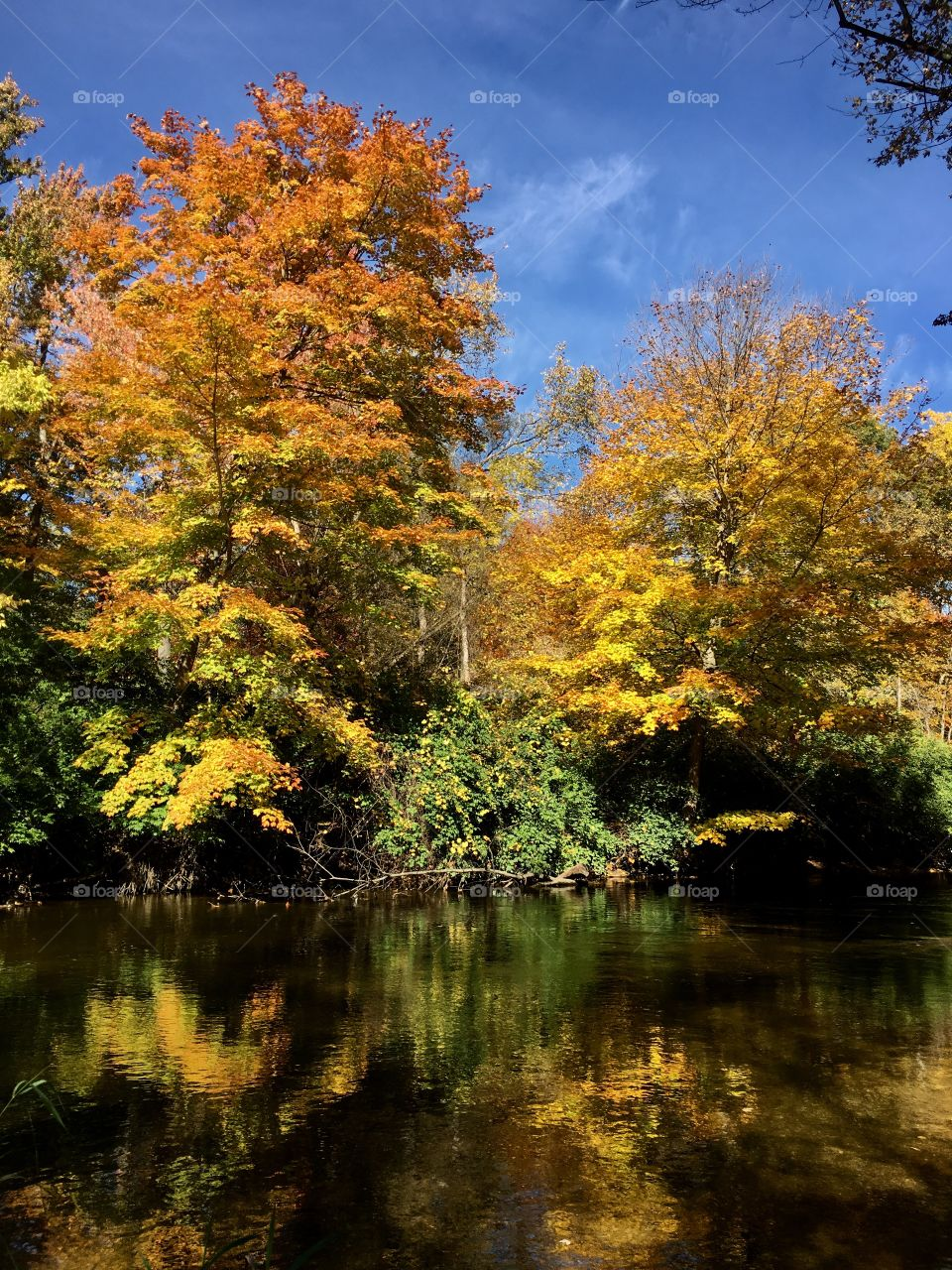 Clinton River and beautiful fall colors!