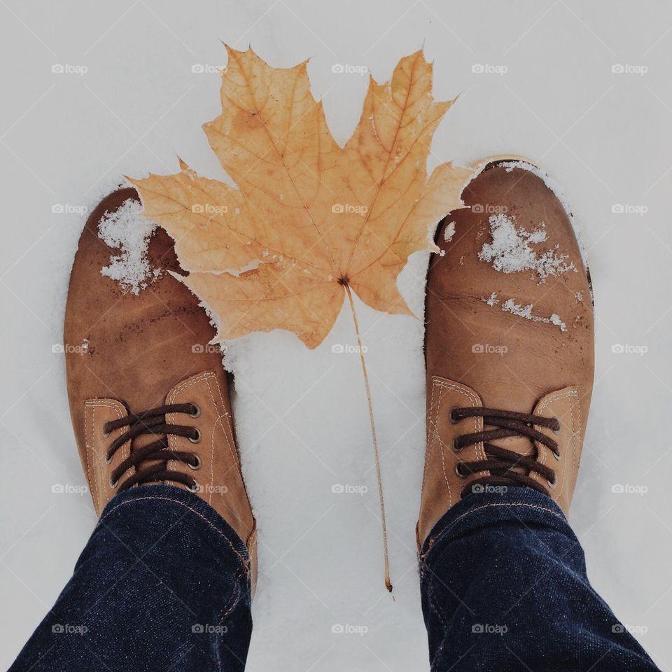 the last leaf on the snow