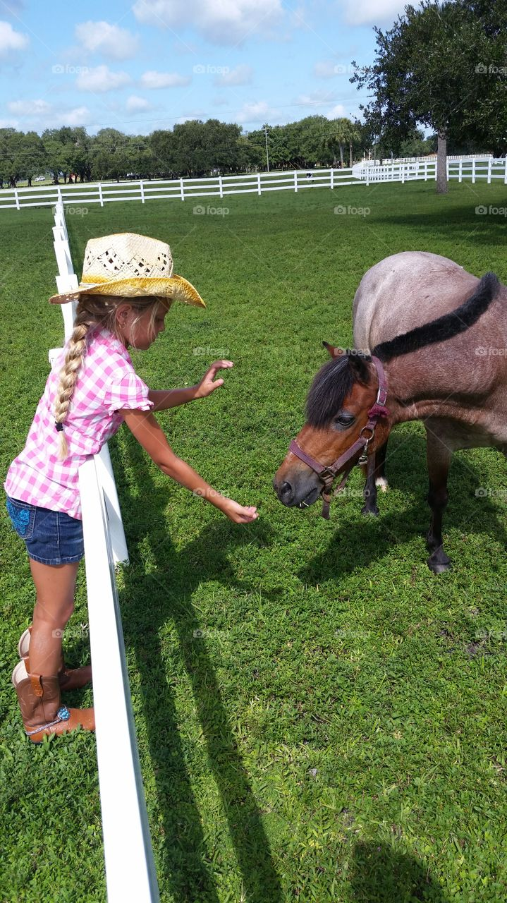 lil horse treat. daughter loves horses