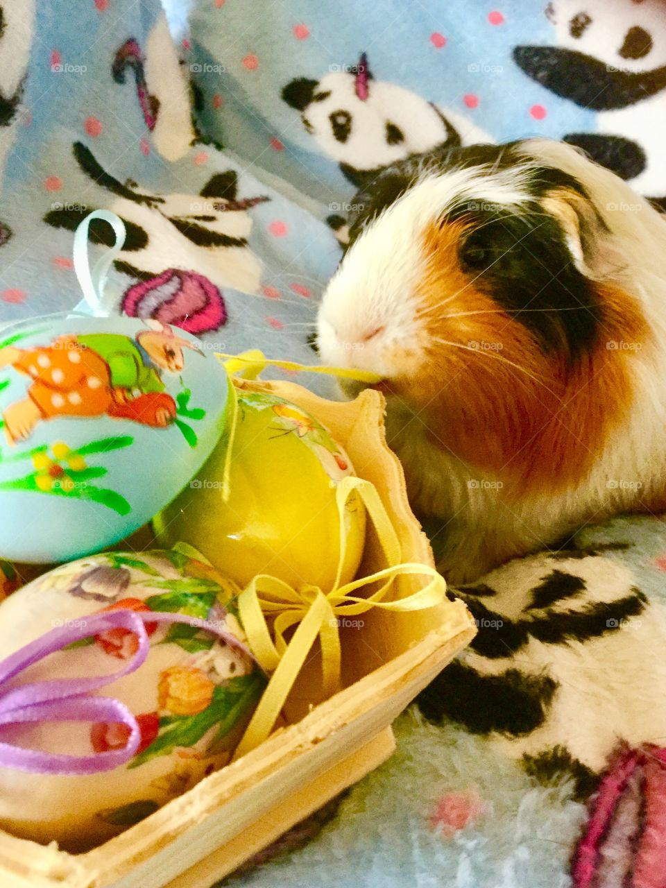 Easter time celebration and decoration