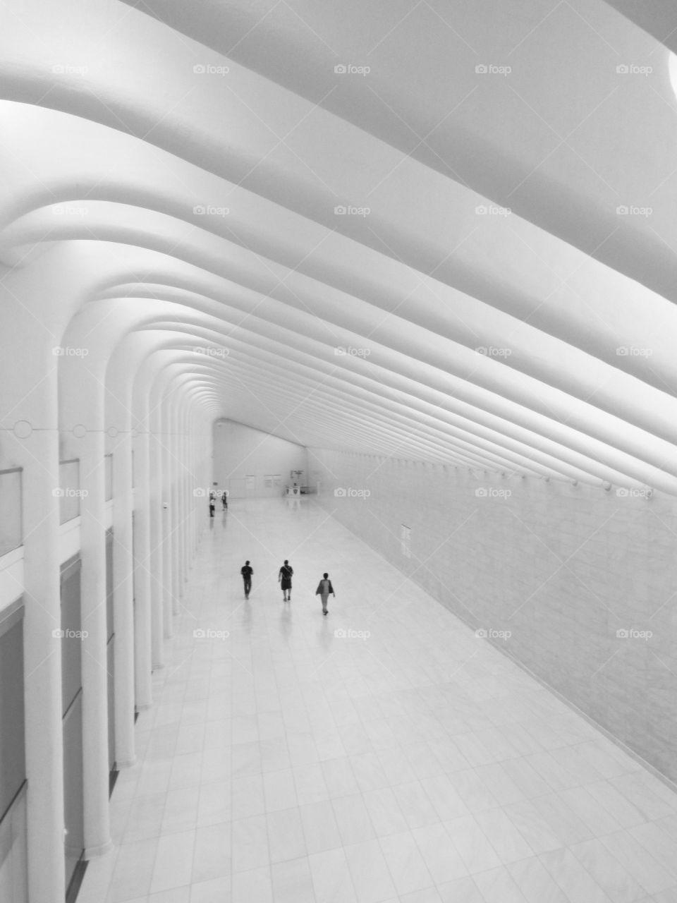 Hub Architecture . Hub Architecture