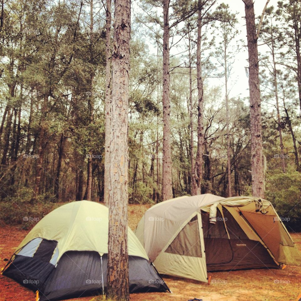 Camping in northern Florida. Camping at a music festival
