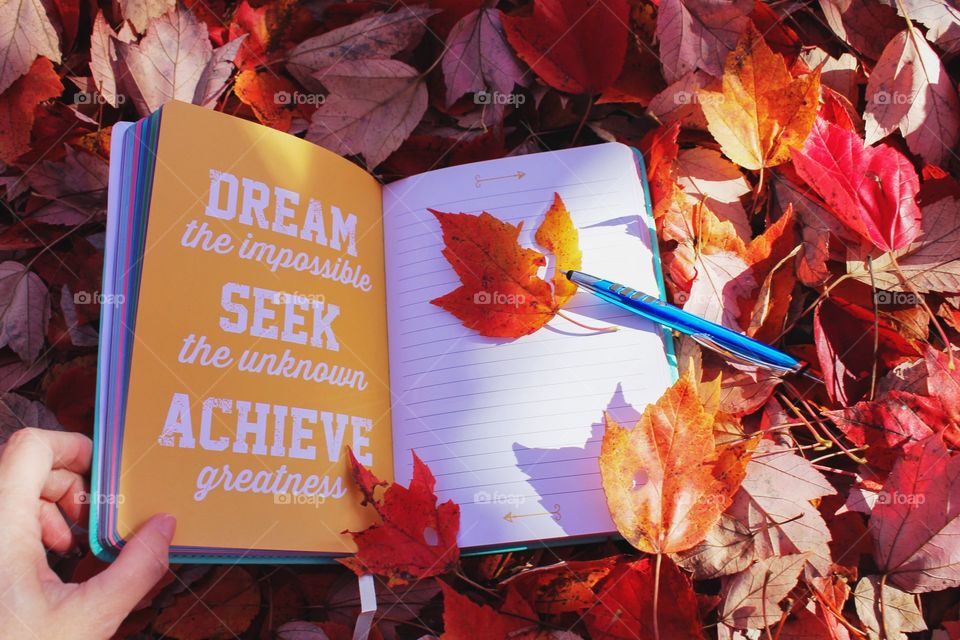 Dream the impossible, seek the unknown, achieve greatness