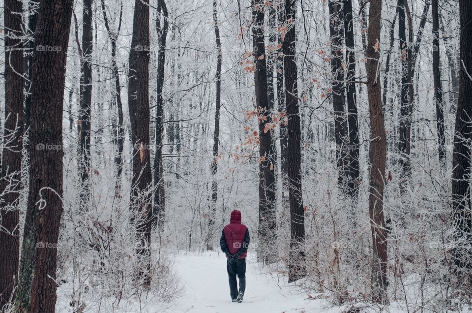 Walking down the snowy trails