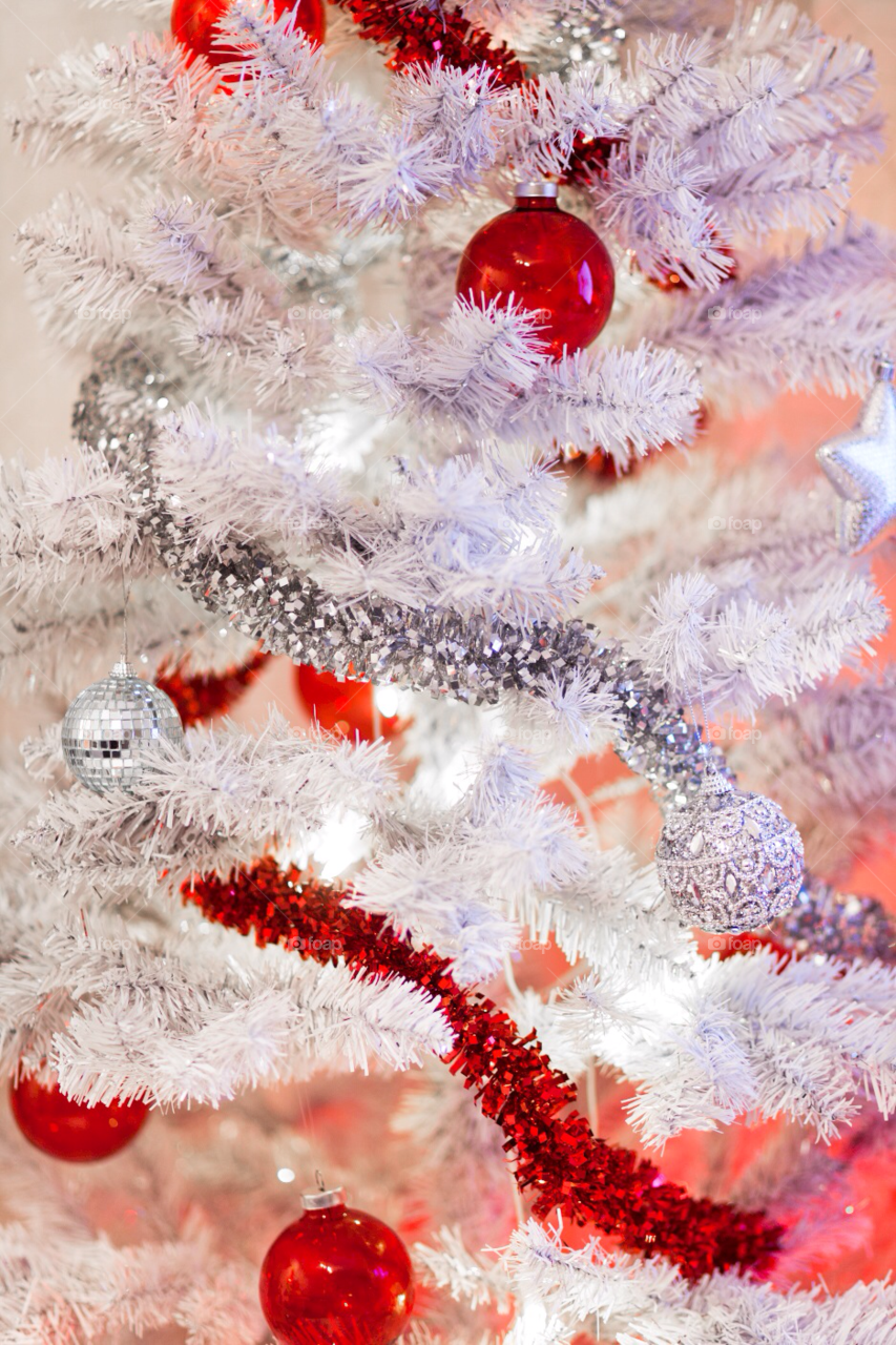 winter red white tree by comonline