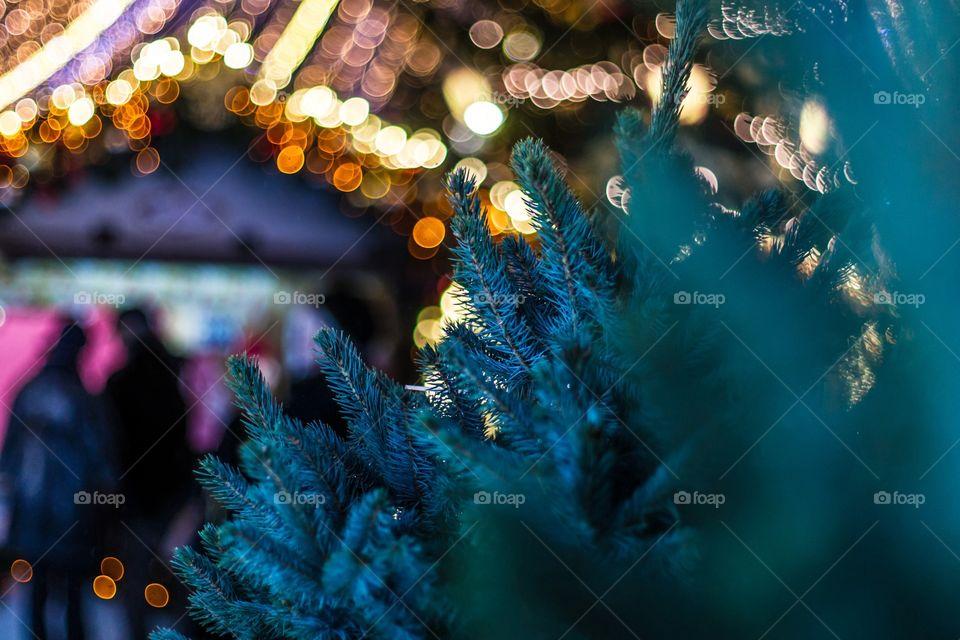 Christmas, Blur, Winter, Celebration, Light