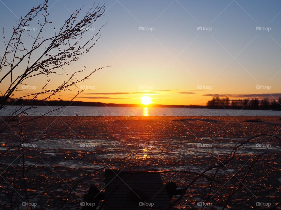 Beautiful evening sky. Sunset colors in the sky and icy water. Branches in front of the view.