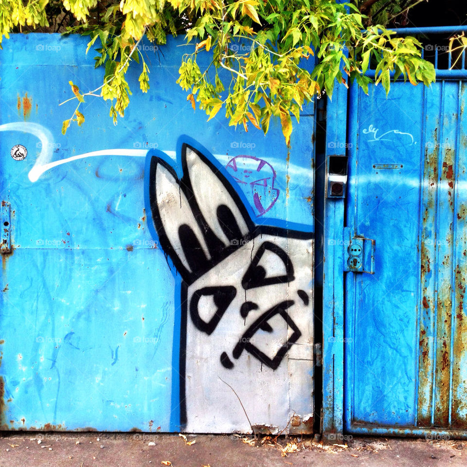 graffiti blue face wall by photosteron. graffiti blue face wall by photosteron