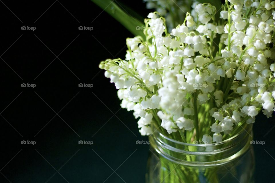 Isolated closeup of lily of the valley blossoms in a mason jar in sunlight