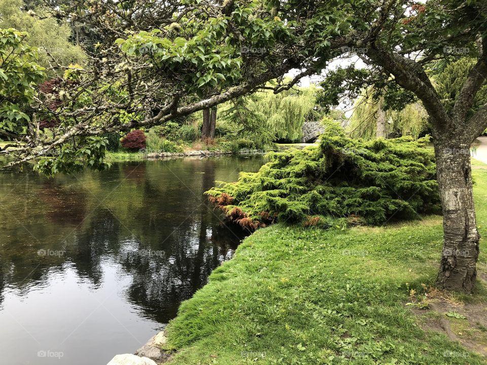 Beautiful Beacon Hill Park