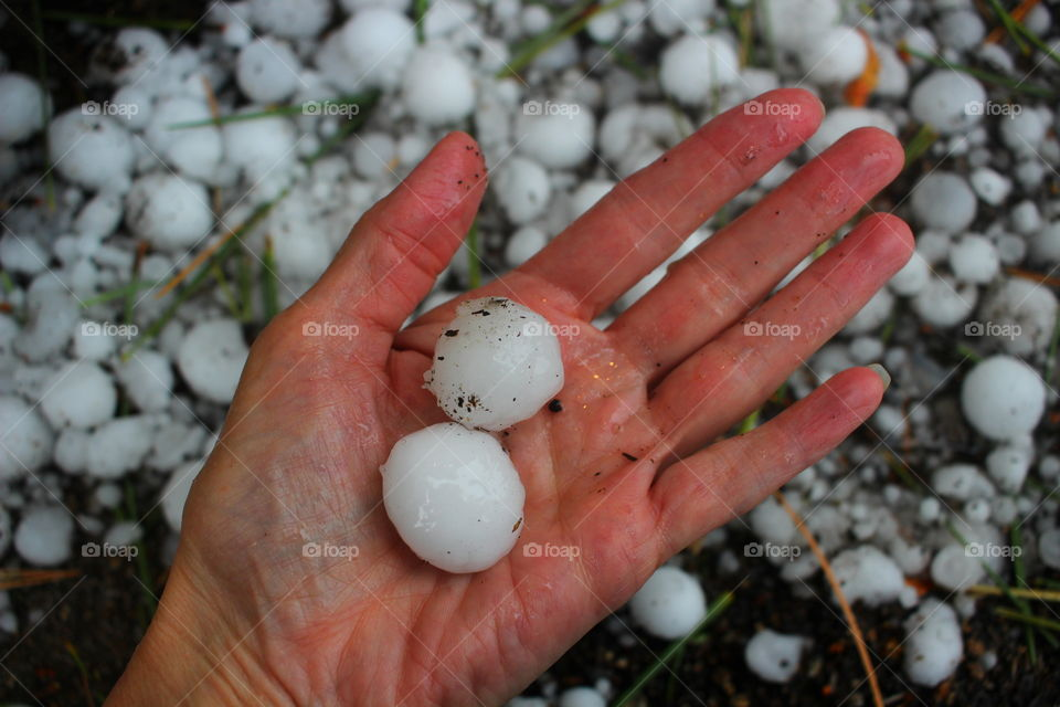 Hail in my Hand. This hail totaled my car. It fell in Tahoe.