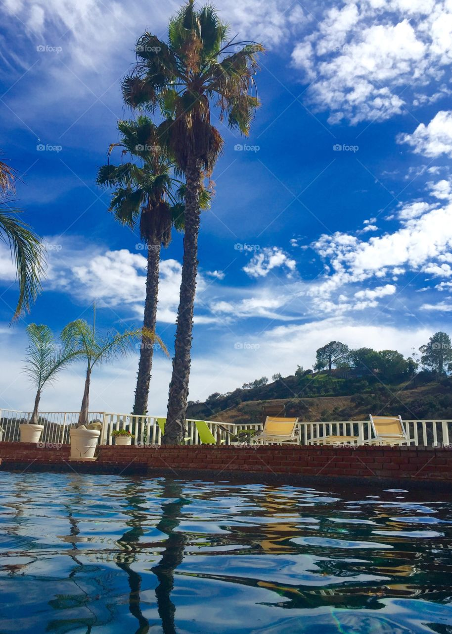 Pool Life. Pool Sunday's in Hollywood, Los Angeles, California , view to Runyon Canyon