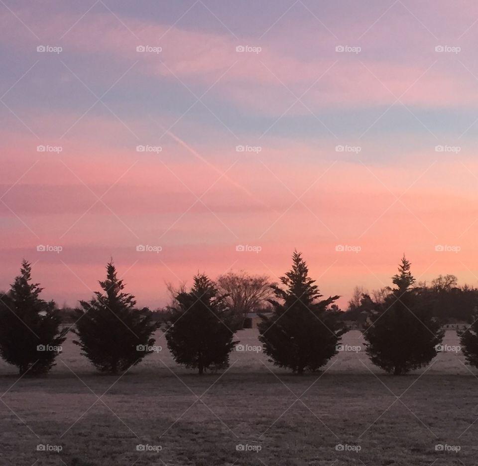 Sunrise in NC