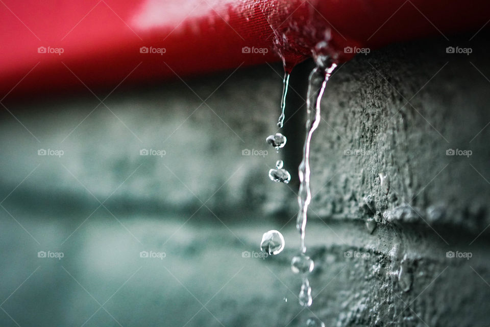 Close-up of water dripping