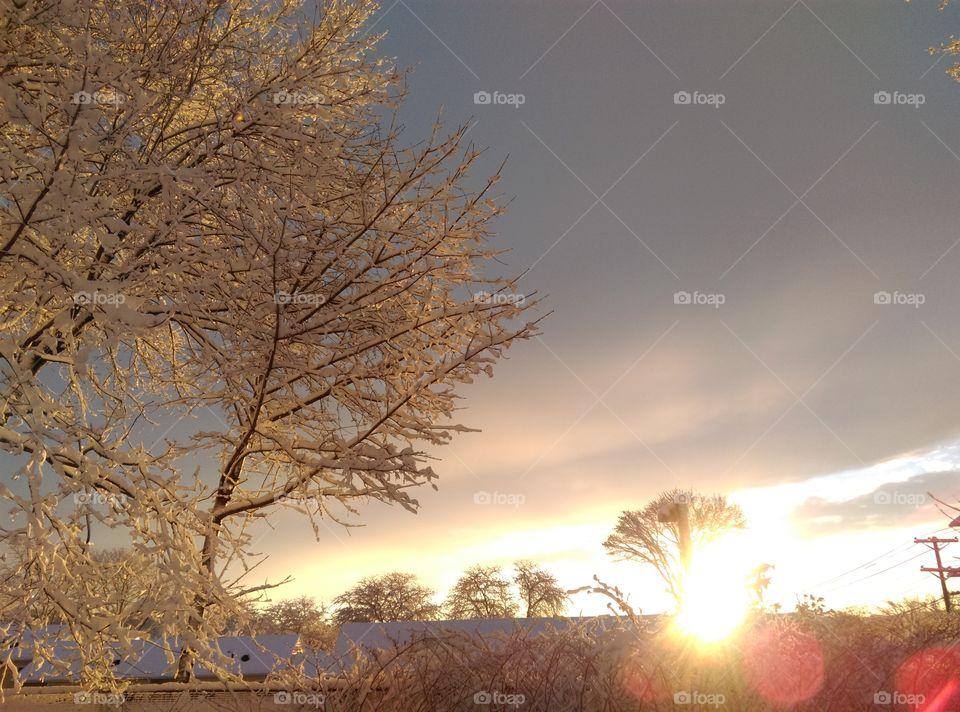 New England Winter Sky
