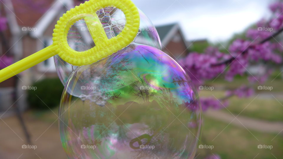 bubbles in front of flowering tree and house