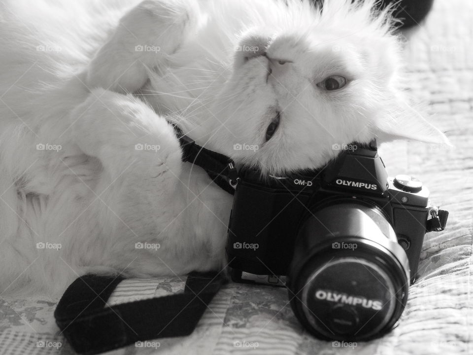 Take my picture, please